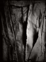 38_noir-okweb.png