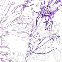 5_grd-fleurs-melee_v2.jpg